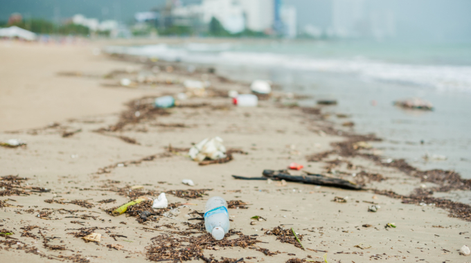 Beach Litter – your quick guide to responsible disposal