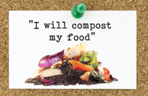 green resolution - composting