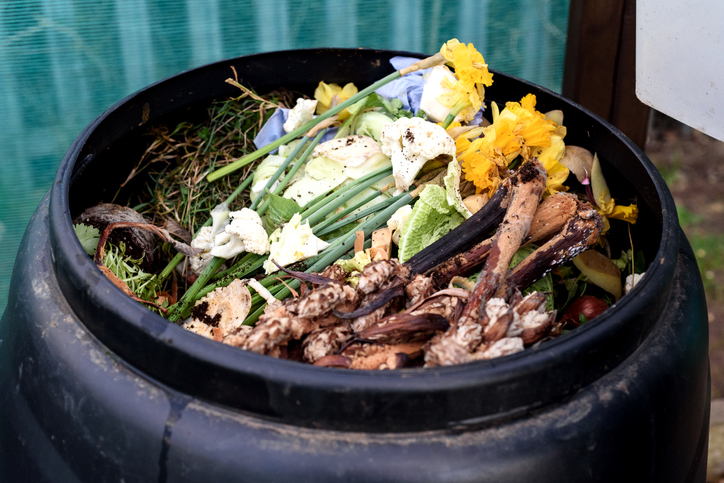 waste reduction tips - compost